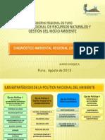 2012 Diagnostico Ambiental Regional
