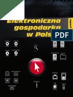 Elektroniczna Gospodarka w Polsce Raport 2007
