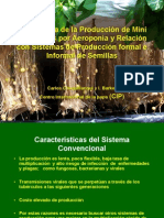 Importancia de la producción de mini tubérculos por aeroponía y relación con sistemas de producción formal e informal de semillas