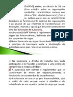 Giovanna Administracao Publica Modulo02 010