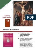 14 La Pasion y Muerte de Jesus