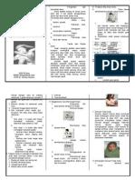 Leaflet Diare Dan Demam