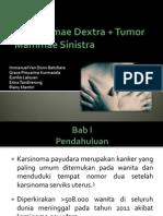 Karsinoma + Tumor Mammae