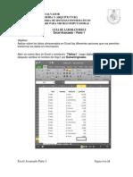 Guia 8 Excel Avanzado 1 2013