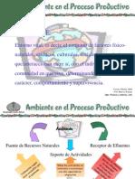 Ecoeficiencia Ambiente en El Proceso Productivo