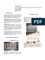 4CMM11-5B-Practica5 (1)
