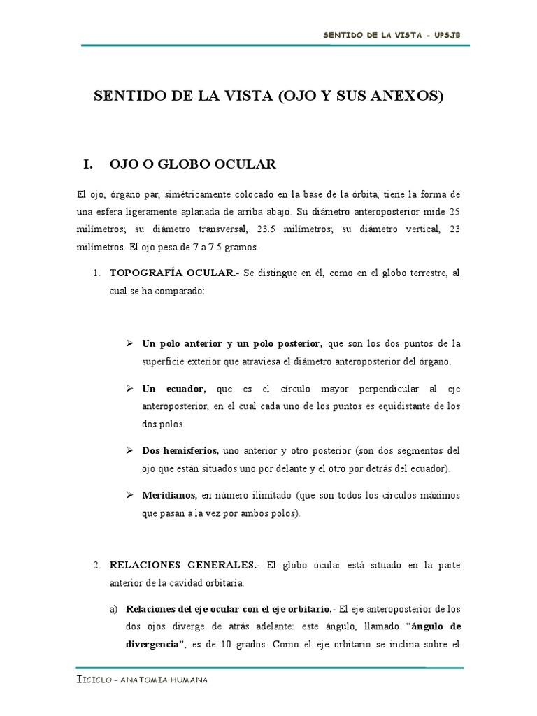 Monografia Vista Cuerpo