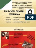 Ablacion Femenina