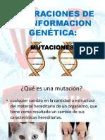 ALTERACIONES DE LA INFORMACION GENÉTICA