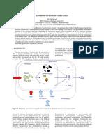 Paper Handbook Biomass Gasification