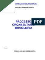 processo adm  brasileiro