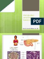 Metabolism and Energy Balance-Pankreas