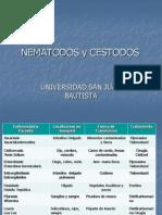 Nematodos y Cestodos