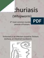 Trichuriasis2