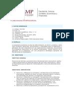 Planeamiento Empresarial - Syllabus