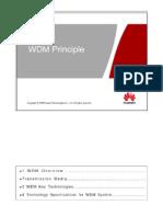 WDM Principle
