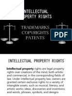 58895712 Intellectual Property Rights