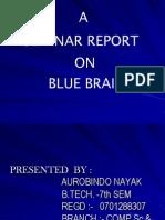 Bluebrain Phpapp01