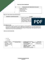 Formato PEI y Planificación