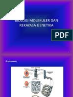 6. Biologi Molekuler Dan Rekayasa Genetika