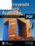 Construyendo Futuro Mexico (1)