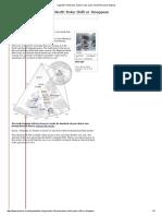 magnetic north pole, Santa Claus, polar movement, polar flipping.pdf