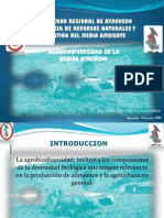 Biodiversidad Ayacucho