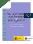 guía_técnica_integración