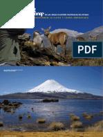 Conservando La Flora y Fauna Amenazada - CONAF