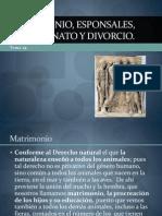 Matrimonio, Esponsales, Concubinato y Divorcio