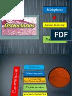 Osteoclastos...Yesus Tercero..!!!
