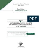 GESTIÓN SEGURA Y DE CALIDAD EN PLANTAS DE PROCESAMIENTO DE MINERALES(1)