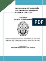 Protocolo de TESIS 2