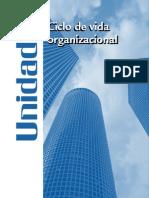 Ciclo de Vida Organizacional