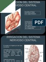 12-13 Irrigacion Del Snc Medula Espinal