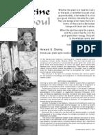 Medicine for the Soul - Plant Spirit Medicine of the Amazon