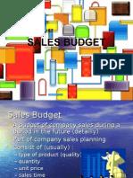 Hamsta Sales Budget