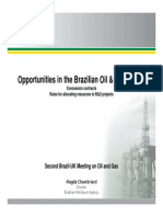 Opportunities in the Brazilian Oil and Gas Sector