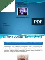 Campo Magnetico Estatico