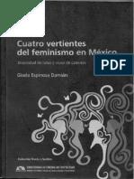 Gisela Espinosa Feminismo Civil