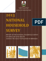 Report of the 2013 National Household Survey - Final