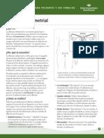 La Ablacion Endometrial.pdf