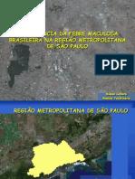 A Vigilância da Febre Maculosa Brasileira na Região Metropolitana de São Paulo