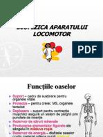 Biofizica Aparatului Locomotor