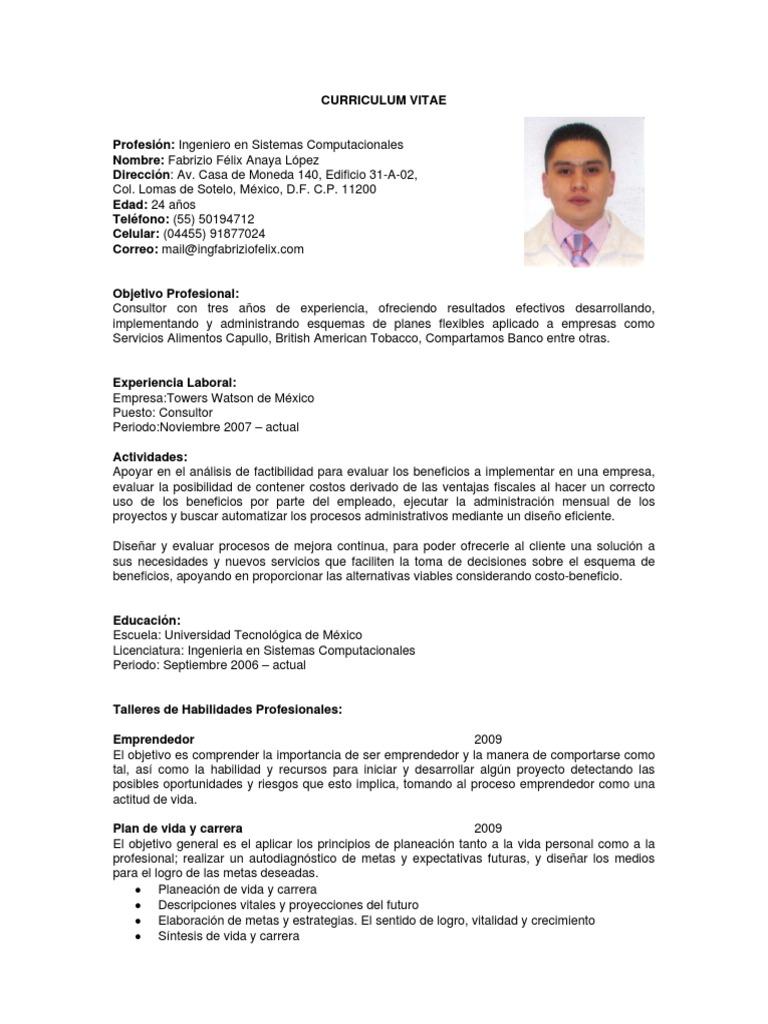 Youblisher.com 80321 Curriculum Fabrizio Anaya