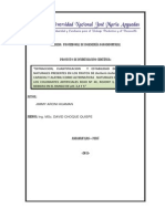 Proyecto de Investigacion de Antocianinas Cheqche