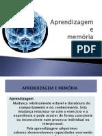 Memoria e Aprendizagem