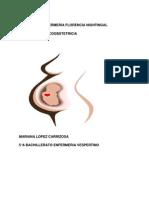 Manual de Ginecoosbtetricia