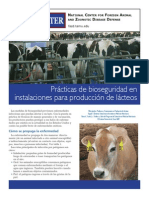 Dairy Fazd 11