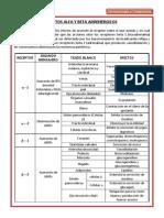 alfaybetaadrenrgicos-130524220446-phpapp02